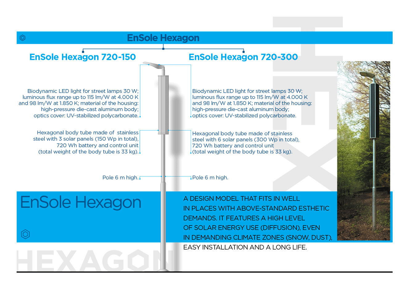 EnSole_Hexagon_web_ENG_200930